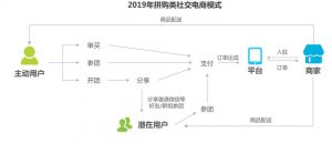 2019拼购类社交电商模式